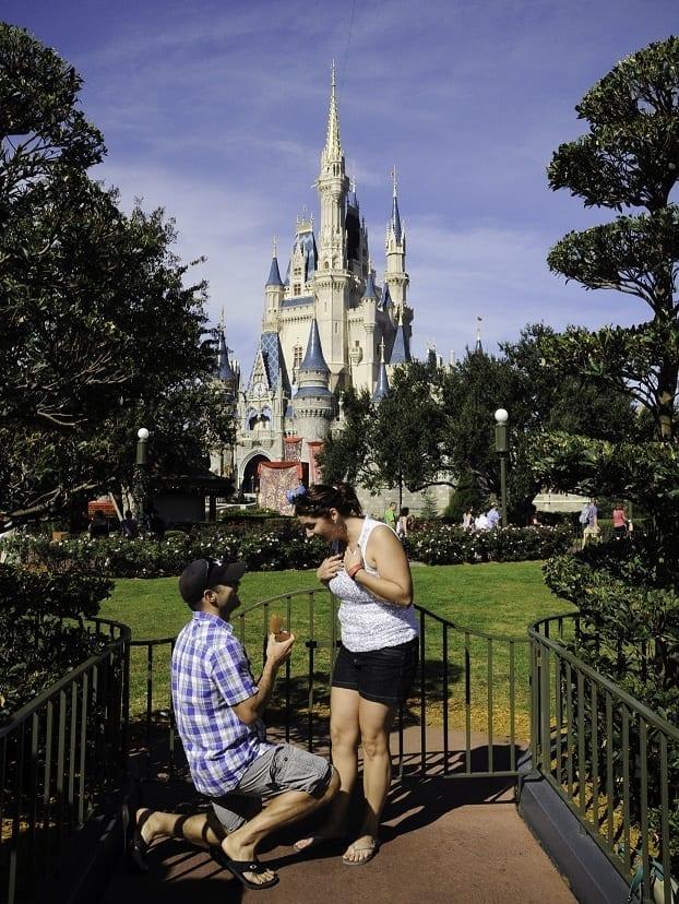 Disney-Proposal-2