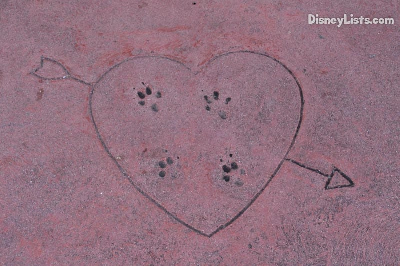 7 secrets of the magic kingdom at disney world disneylists 7 paw prints guests who visit the magic kingdom love to dine at tonys town square restaurant on main street just inside the gates publicscrutiny Gallery