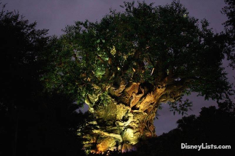 Tree of Life-Night