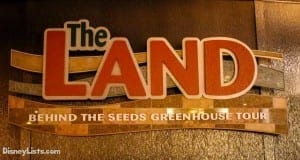 Featured-Behind the Seeds