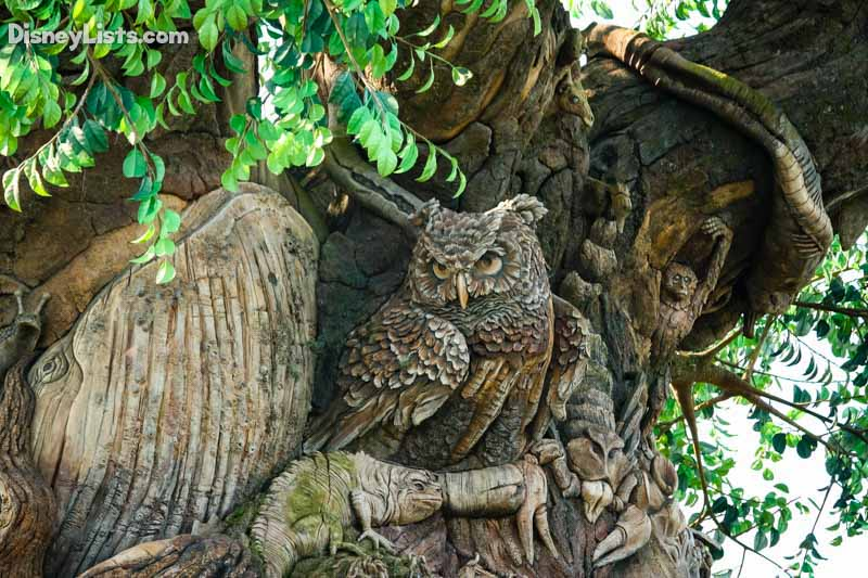Owl Carving-Tree of Life