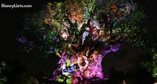 Featured-Tree of Life at Night