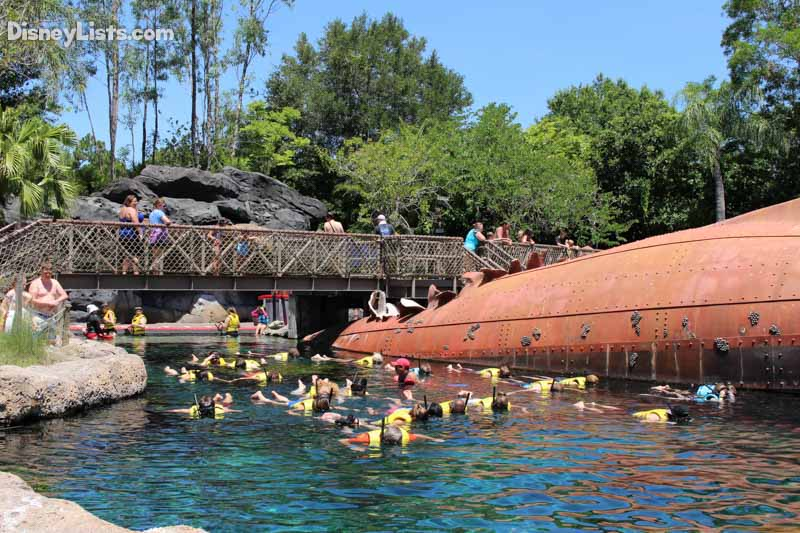 Swim with the Sharks-Typhoon Lagoon