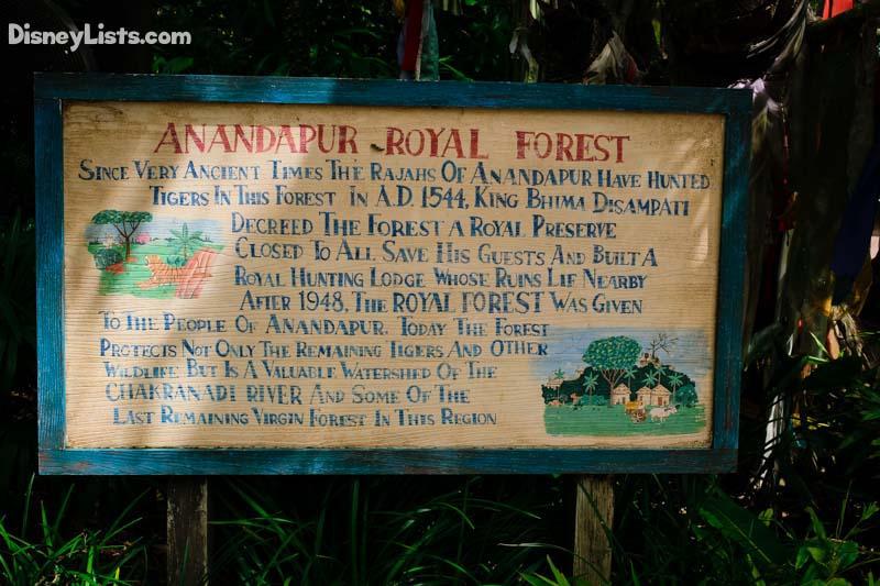 M Trek Forest