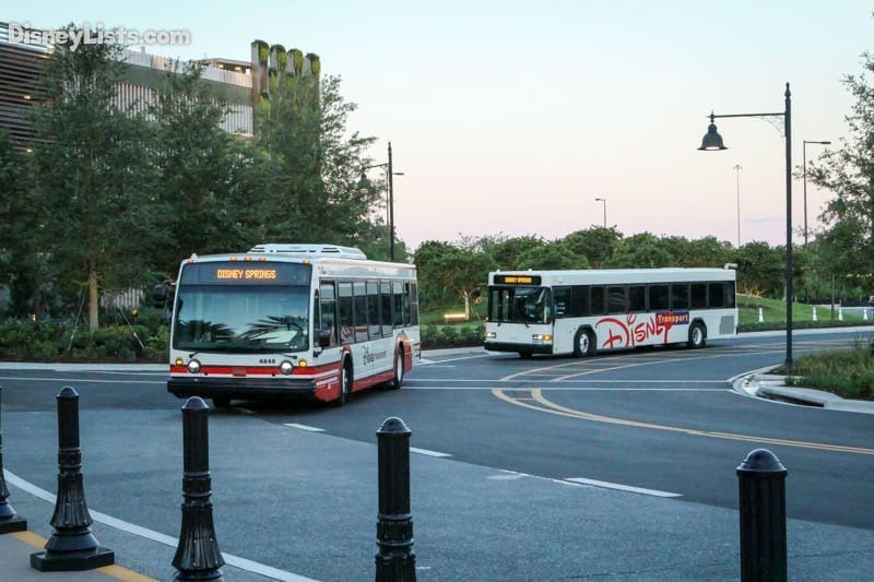 Buses Arriving at Disney Springs