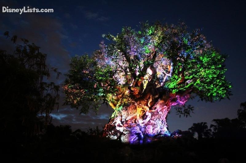Tree Awakens