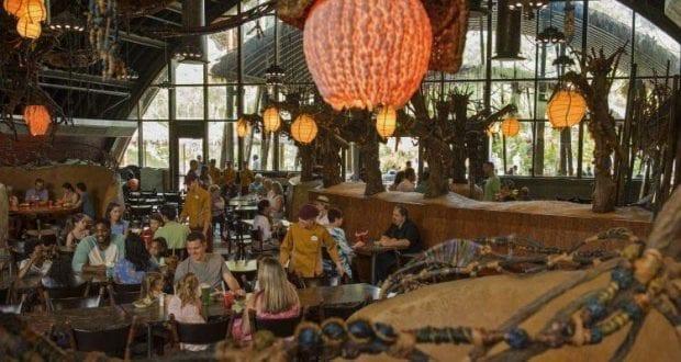Restaurants At Disney S Animal Kingdom Photo Credit